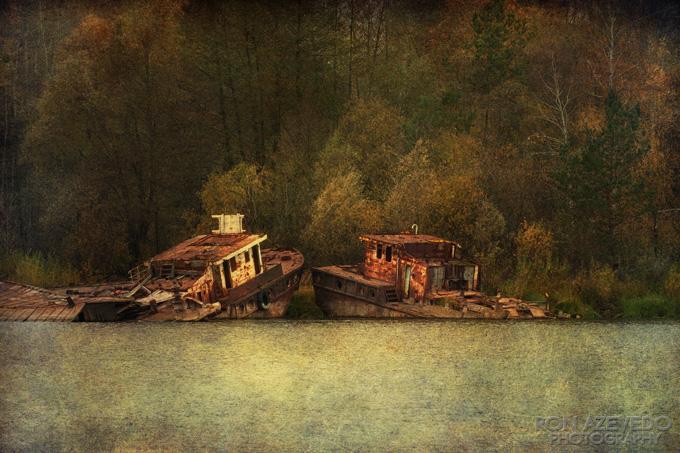Mingling At River's Edge